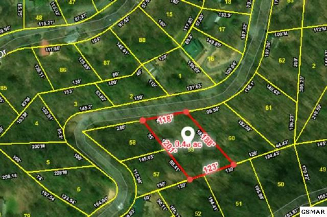 Lot 59 Zurich Road, Gatlinburg, TN 37738 (#219453) :: Colonial Real Estate