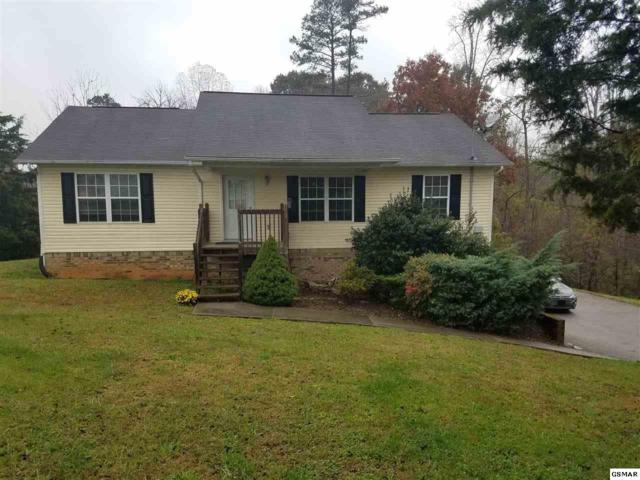 4529 Winslow Dr., Strawberry Plains, TN 37871 (#219466) :: The Terrell Team