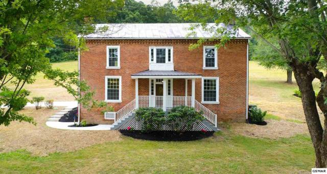 532 Jubilee Rd, Afton, TN 37616 (#219475) :: Colonial Real Estate