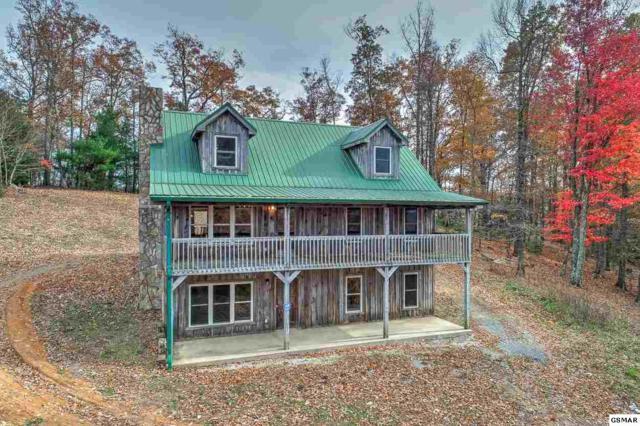 240 Joe Pye Lane, Greeneville, TN 37743 (#219476) :: Colonial Real Estate