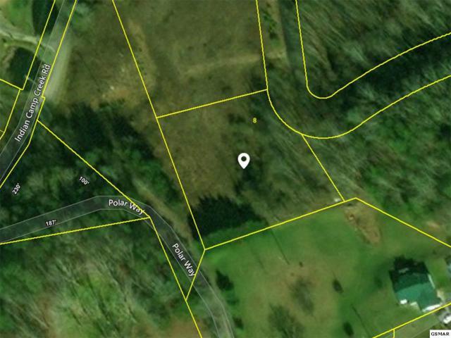 Polar Way, Cosby, TN 37722 (#219477) :: SMOKY's Real Estate LLC