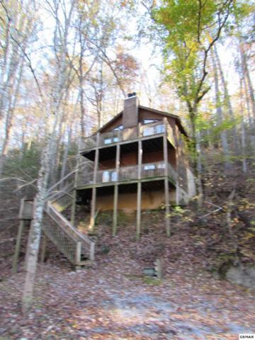 "1418 School House Gap Rd ""Whispering Cre, Sevierville, TN 37876 (#219485) :: Colonial Real Estate"