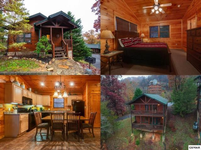 747 Mountain Stream Way, Gatlinburg, TN 37738 (#219488) :: Colonial Real Estate