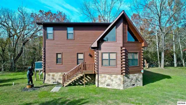 178 Wilton Springs Rd, Newport, TN 37821 (#219490) :: SMOKY's Real Estate LLC