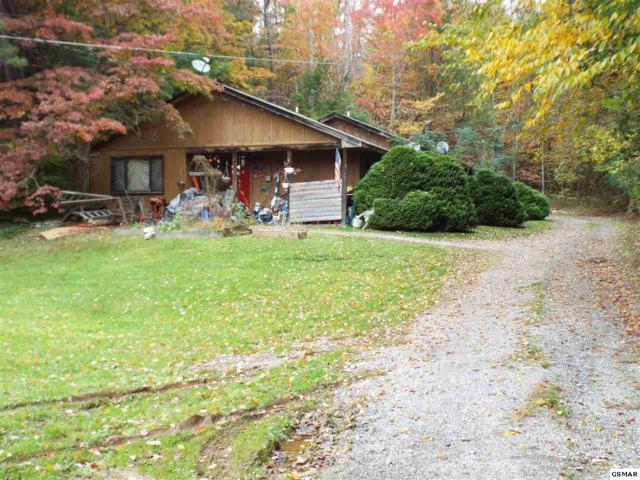 460 Buckhorn Road, Gatlinburg, TN 37738 (#219501) :: SMOKY's Real Estate LLC