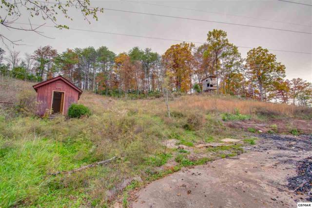 4219 Calderwood Highway, Maryville, TN 37801 (#219502) :: Billy Houston Group