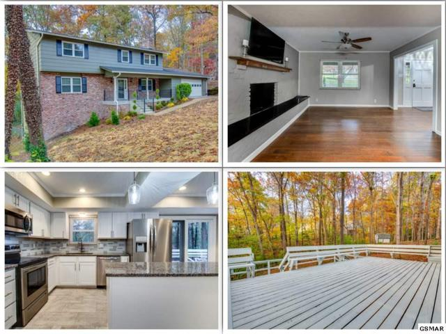 1905 Stonebrook Dr, Knoxville, TN 37923 (#219504) :: Billy Houston Group