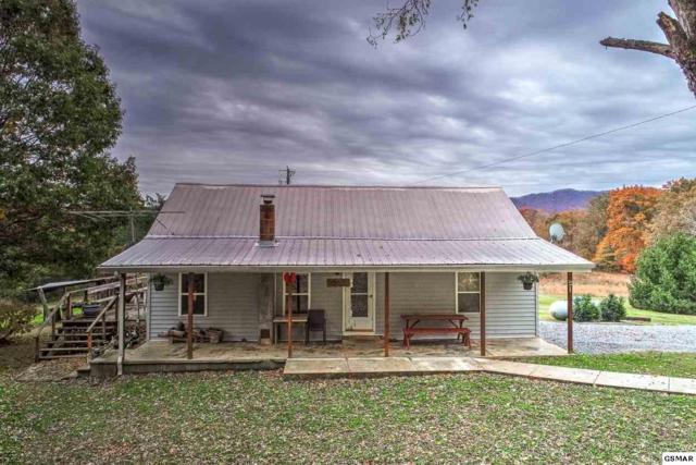 3375 Kenyon Rd, Parrottsville, TN 37843 (#219505) :: Colonial Real Estate