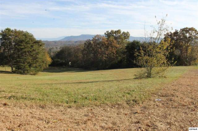804 Bridle Ct, Seymour, TN 37865 (#219520) :: Billy Houston Group
