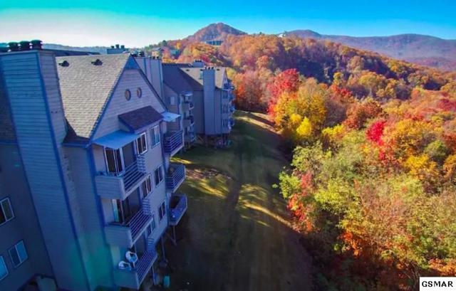 1260 Ski View Dr #5302, Gatlinburg, TN 37738 (#219526) :: Billy Houston Group