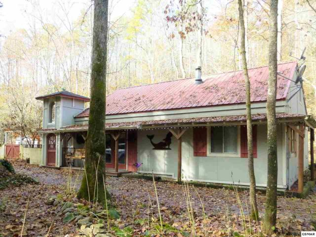 5041 Mathis Branch Rd, Cosby, TN 37722 (#219539) :: Colonial Real Estate