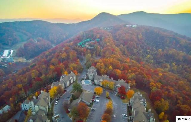 1260 Ski View Dr #1304, Gatlinburg, TN 37738 (#219580) :: Billy Houston Group