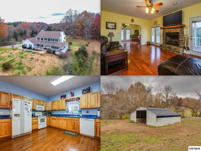 293 Red Bud Lane, Sevierville, TN 37876 (#219593) :: The Terrell Team