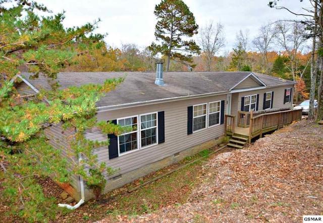 1020 Pleasure Road, Sevierville, TN 37876 (#219598) :: Colonial Real Estate