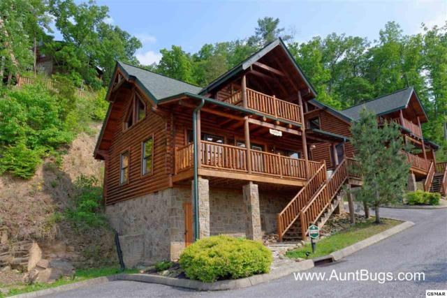 1606 Mountain Lodge Way Poolside (Farme, Sevierville, TN 37862 (#219607) :: Billy Houston Group