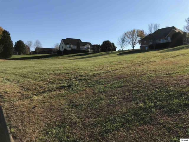 Lot 11 Bentwood, Kodak, TN 37764 (#219664) :: The Terrell Team