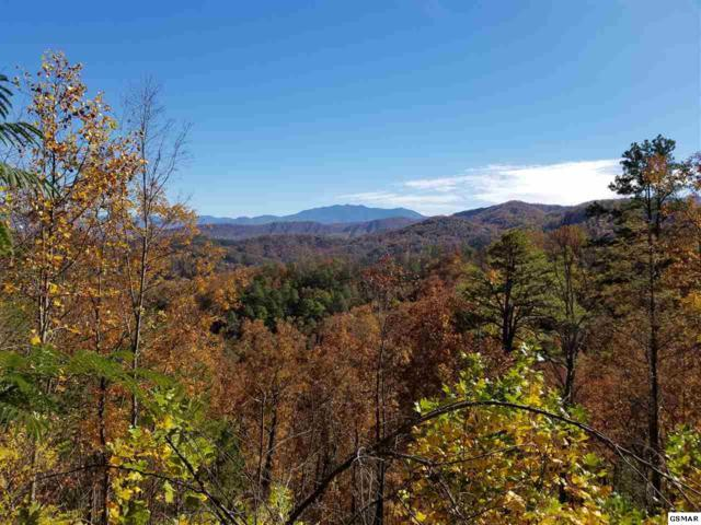 Lot 52 Windmere Way Cascades Upon C, Sevierville, TN 37862 (#219666) :: Tennessee Elite Realty