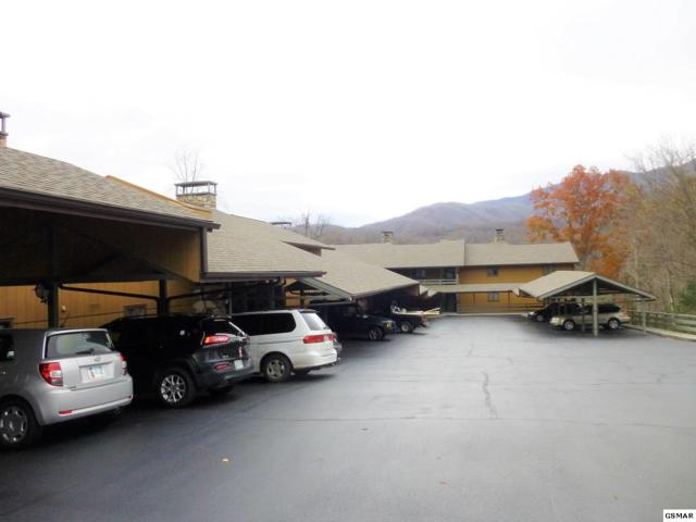 1824 Oriole Rd. Unit 111 Hidden, Gatlinburg, TN 37738 (#219667) :: Billy Houston Group