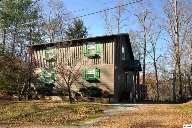 193 Cold Springs Trace, Townsend, TN 37882 (#219682) :: Prime Mountain Properties