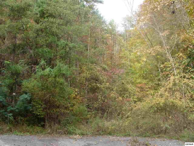 7 Acres Deer Browse Way, Sevierville, TN 37876 (#219708) :: Billy Houston Group