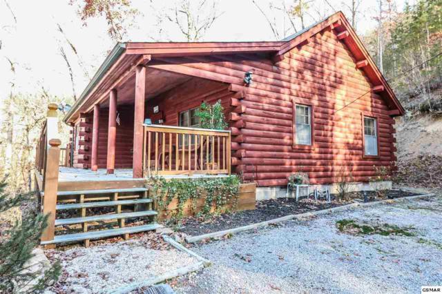 1408 Black Oak Dr, Sevierville, TN 37876 (#219727) :: Billy Houston Group