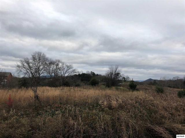 Lot 33 Murrell Meadows Dr, Sevierville, TN 37876 (#219741) :: Colonial Real Estate
