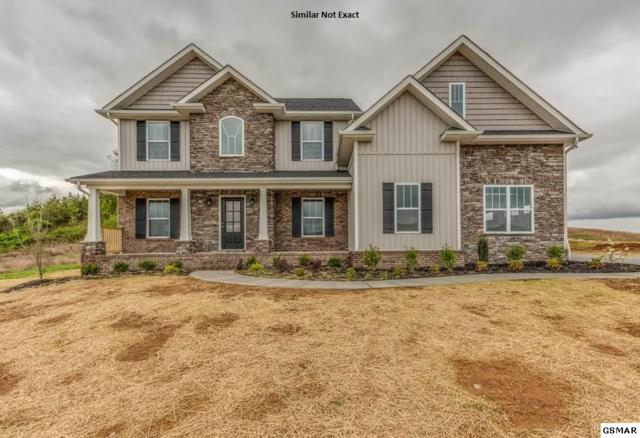 224 Bluff Shadows Ln., Seymour, TN 37865 (#219745) :: Colonial Real Estate