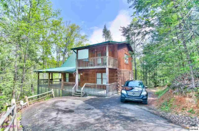 "733 Ski View Ln ""HAPPY HARBOR"", Sevierville, TN 37876 (#219759) :: The Terrell Team"