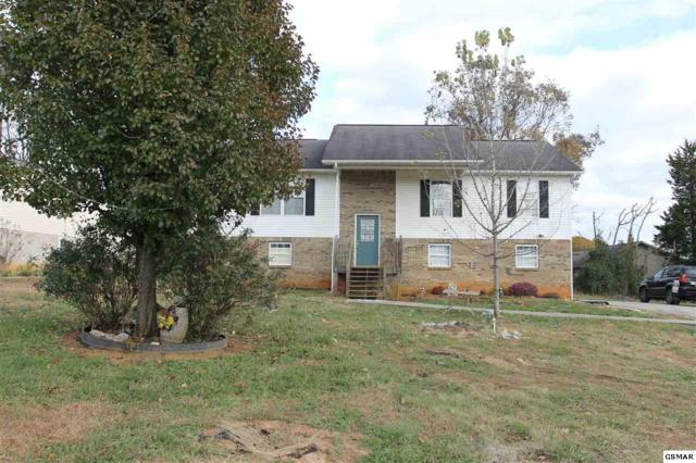 4570 Winslow Dr, Strawberry Plains, TN 37871 (#219761) :: The Terrell Team