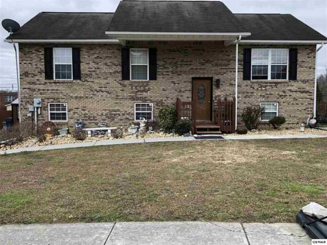 4152 Briggs Loop, Kodak, TN 37764 (#219775) :: Colonial Real Estate