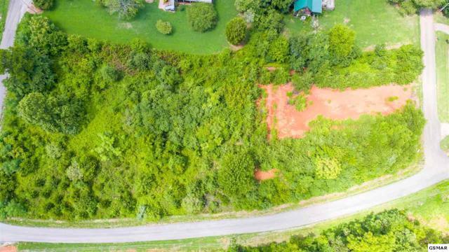 Lot 18R1 Ownby Drive, Kodak, TN 37765 (#219780) :: Four Seasons Realty, Inc