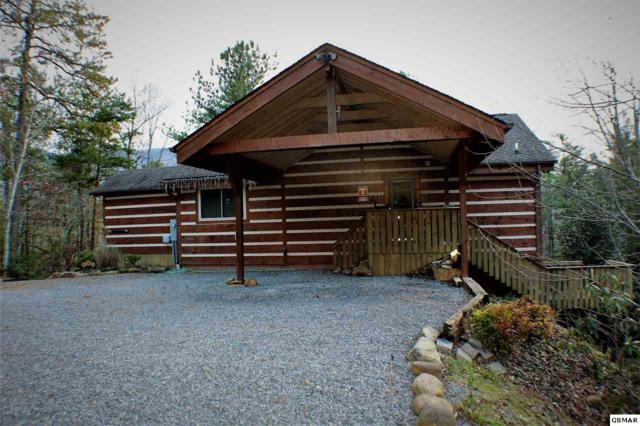 317 Matterhorn Dr, Gatlinburg, TN 37738 (#219802) :: Colonial Real Estate