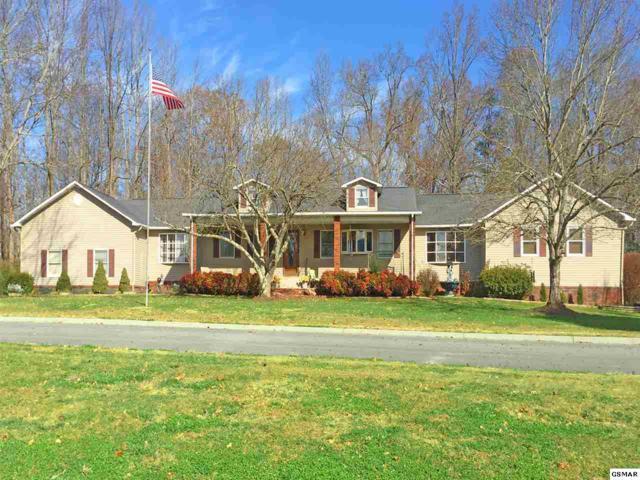 236 Estele Drive, Sevierville, TN 37876 (#219813) :: Prime Mountain Properties