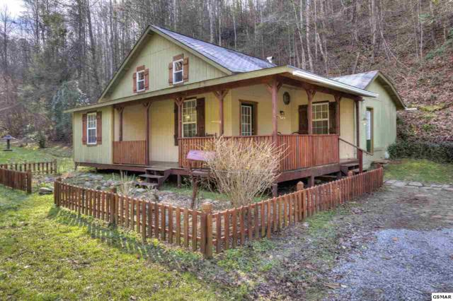 4346 Grindstone Ridge Road, Pigeon Forge, TN 37863 (#219819) :: Four Seasons Realty, Inc