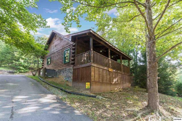 "161 Smoky Mountain Way ""Love Shack"", Sevierville, TN 37876 (#219822) :: Four Seasons Realty, Inc"