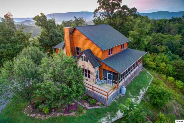 3490 Caywood Road, Dandridge, TN 37725 (#219823) :: Four Seasons Realty, Inc