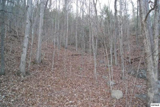 Lot# 7 Mountain Blvd., Sevierville, TN 37876 (#219831) :: Four Seasons Realty, Inc