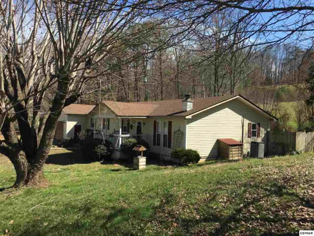 2736 Cedar Bluff Rd, Sevierville, TN 37876 (#219832) :: Four Seasons Realty, Inc