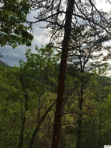 Lot 73 Parkside Retreat Way, Sevierville, TN 37862 (#219836) :: Billy Houston Group