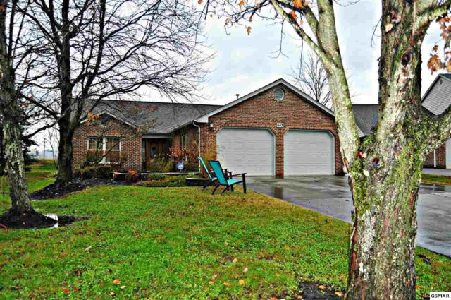 643 Sunrise Circle, Sevierville, TN 37862 (#219842) :: Four Seasons Realty, Inc