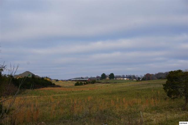 Valley Home Rd., Dandridge, TN 37787 (#219848) :: Colonial Real Estate