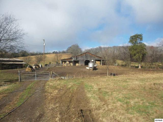 Dalton Dalton Rd Off, New Market, TN 37820 (#219849) :: The Terrell Team