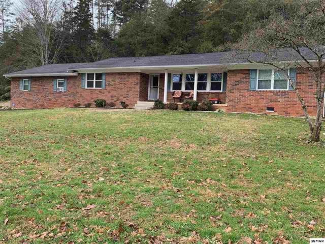 1975 Lafayette Rd, New Market, TN 37820 (#219853) :: The Terrell Team