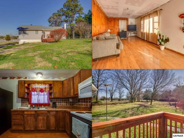 5320 Shipe Road, Knoxville, TN 37721 (#219854) :: Colonial Real Estate