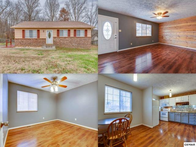 9502 Dongate Lane, Knoxville, TN 37931 (#219858) :: The Terrell Team