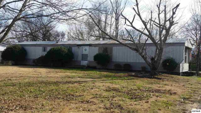 414 Bluff Mountain Drive, Walland, TN 37886 (#219860) :: Four Seasons Realty, Inc