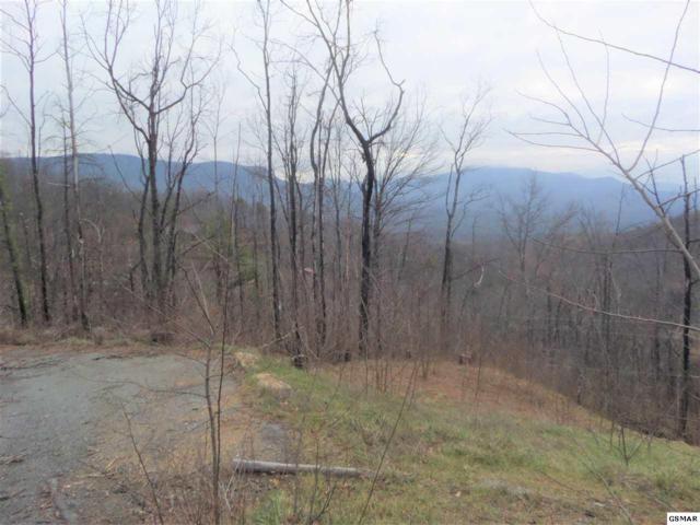 1216 Pine Top Ln Lots 23, 24 And, Gatlinburg, TN 37738 (#219861) :: Four Seasons Realty, Inc