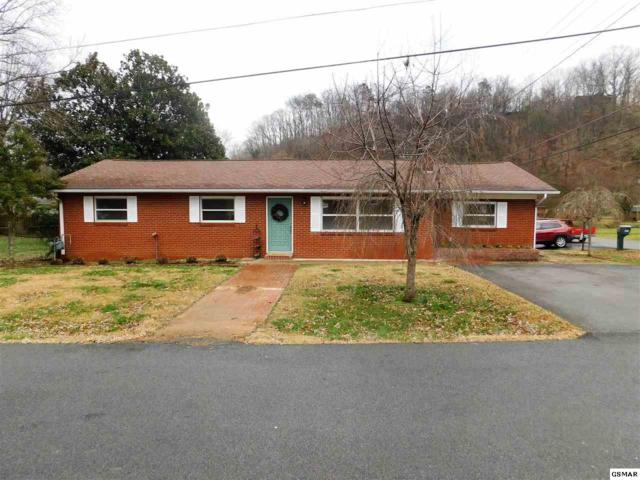 203 Hillis Dr, Pigeon Forge, TN 37863 (#219868) :: The Terrell Team