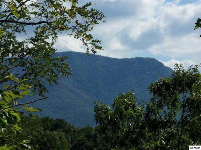Pine Top Ln Lots 24 & 27, Gatlinburg, TN 37738 (#219873) :: The Terrell Team
