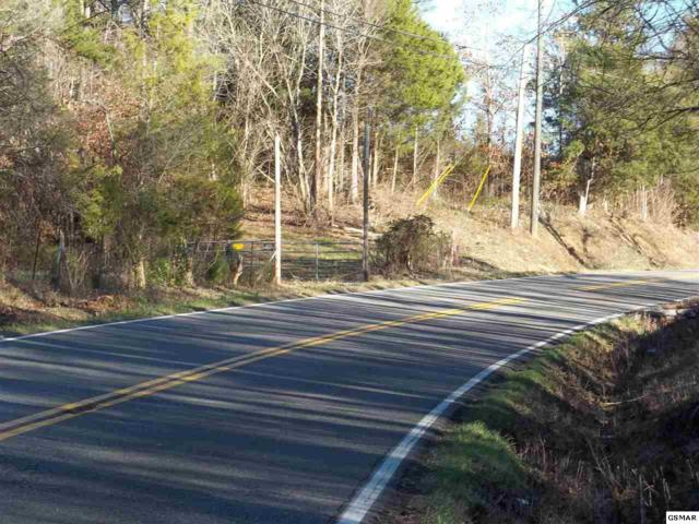 Lot 16C Old Newport Hwy, Sevierville, TN 37876 (#219885) :: The Terrell Team